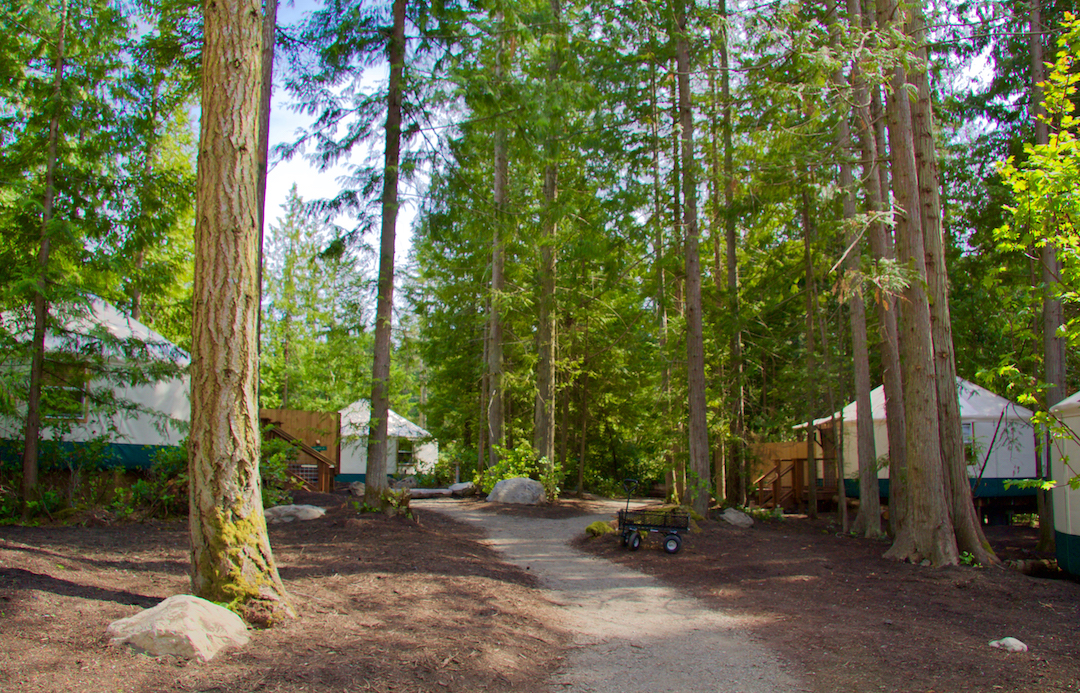 exterior pathway to yurts